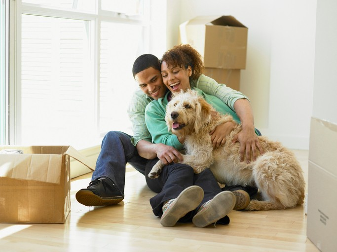 Moving with pets. Dog and couple paking