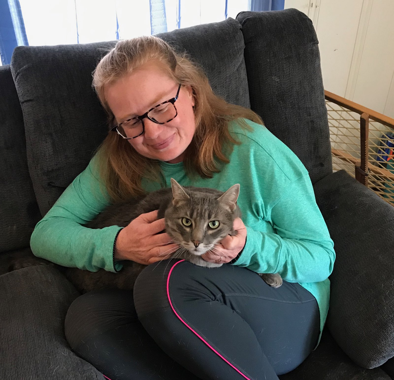 Cat in Knob Noster Pet Sitter's lap