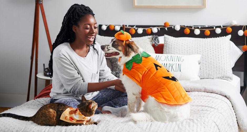 Safe Afforable Halloween pets on bed